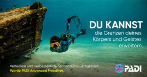 Freediver Tauchschule Tauchkurs Hannover